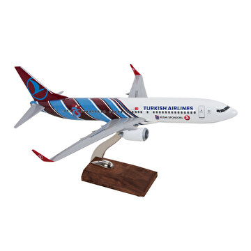 Picture of TK Collection B737-800 1/100 TS Model Uçak