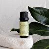 Oilwise Çay Ağacı Yağı 10 ml. ürün görseli