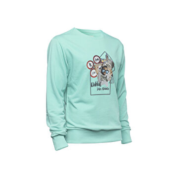 Picture of BiggDesign Nature Durak Erkek Sweatshirt