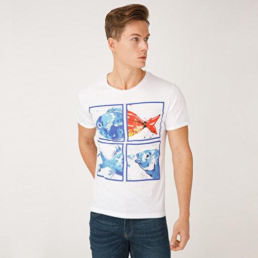 Biggdesign AnemosS Akvaryum Erkek T-Shirt. ürün görseli