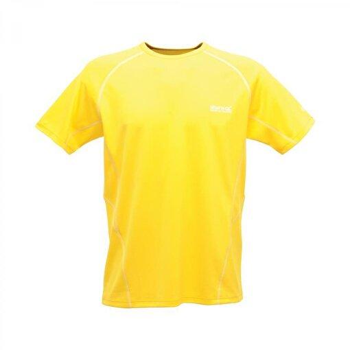 Regatta Kendrik Erkek T-Shirt-SARI. ürün görseli