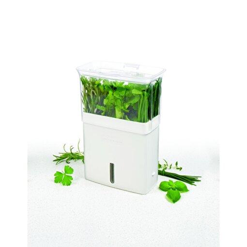 Cole & Mason H105159 Bölmeli Yeşillik Saklama Kabı. ürün görseli