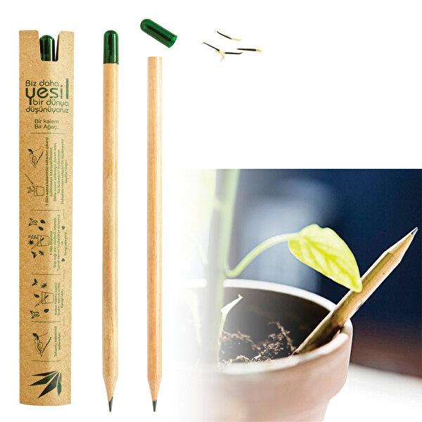 Nektar Tohumlu Kurşun Kalem. ürün görseli
